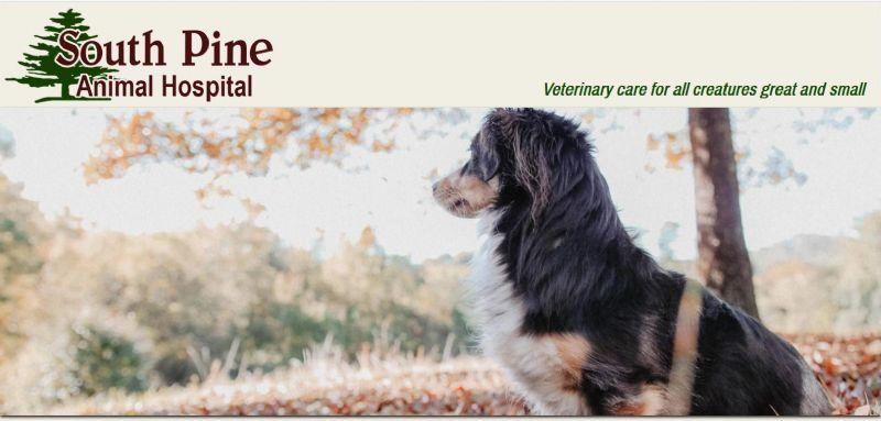 South Pine Animal Hospital